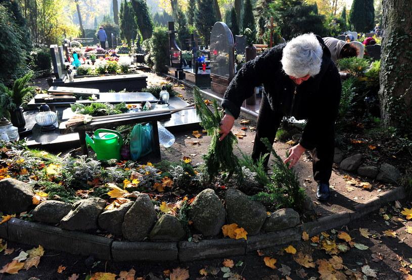 """""""Przyzwyczailiśmy się, że 1 listopada jedziemy na groby, ale uroczystość Wszystkich Świętych nie jest Dniem Zadusznym"""" /Marcin Bielecki /PAP"""