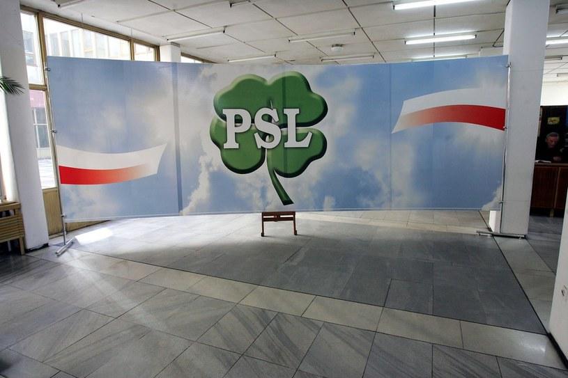 PSL w Świnoujściu donosi na władze partii /Witold Rozbicki /Reporter