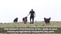 Psy zagrożone wyginięciem!