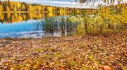 Pustelnia Złotego Lasu - dla szukających świętego spokoju
