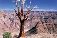 Pustynia kamienista, kanion rzeki Fish w Namibii /Encyklopedia Internautica