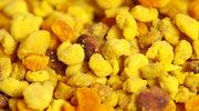 Pyłek kwiatowy - właściwości i zastosowanie