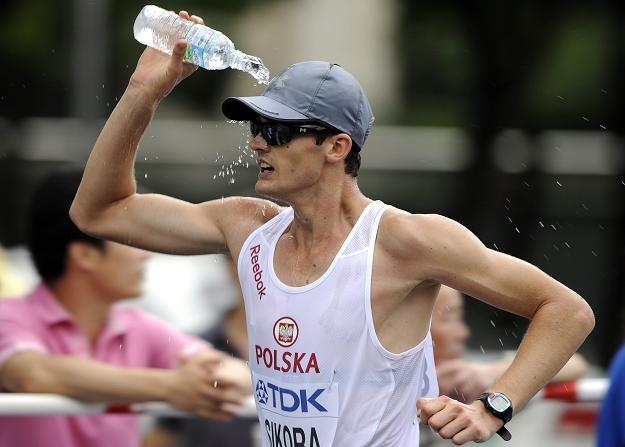 Rafał Sikora /PAP/EPA