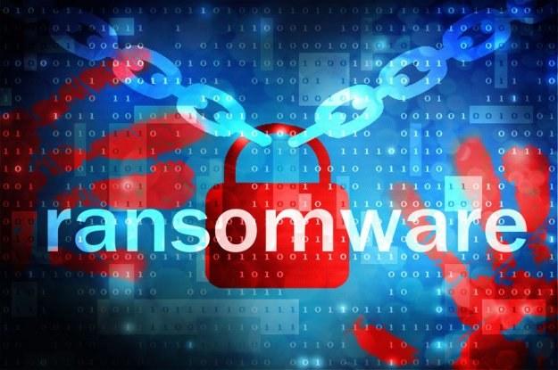 Ransomware stanowi ogromne zagrożenie dla wszystkich użytkowników internetu /©123RF/PICSEL