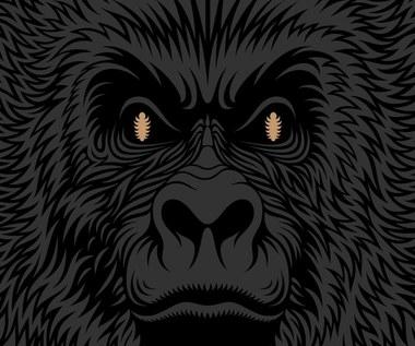 """Recenzja Małpa """"Mówi"""": Kanistry z benzyną"""