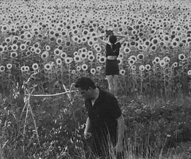 """Recenzja Sun Kil Moon/Jesu """"Sun Kil Moon/Jesu"""": Piosenki o miłości są takie banalne"""