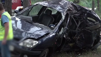 Renault roztrzaskał się o drzewo. Trzy osoby zginęły - jechali bez zapiętych pasów