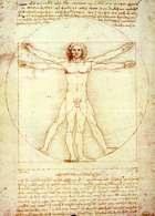 Renesans: studium proporcji ludzkiego ciała według Witruwiusza, rysunek z notatkami Leonarda da Vi /Encyklopedia Internautica