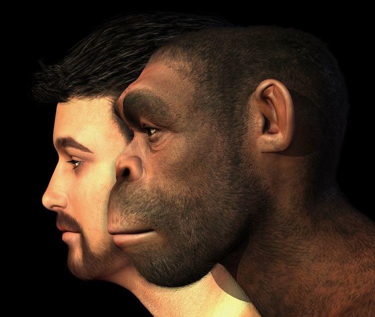 Rewolucja w sposobie myślenia o neandertalczykach /©123RF/PICSEL