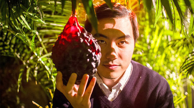 """Reżyser Yung Chang również jest """"łowcą owoców"""". /materiały dystrybutora"""
