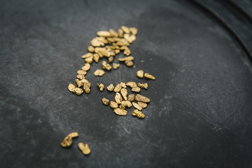 Richard Mason i Joyce Mason pokazują złoto, które znaleźli w Kalifornii /The New York Times Syndicate