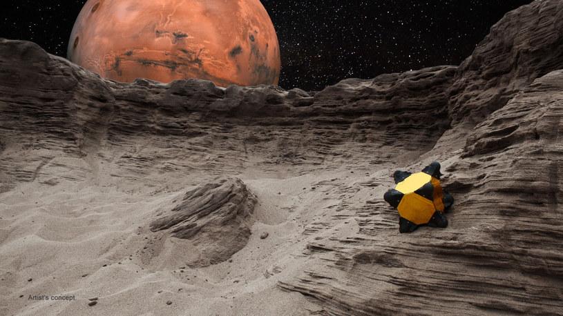Robojeż - wizja artystyczna /NASA