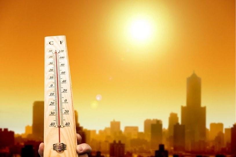 Rok 2017 był  najcieplejszy w historii /123RF/PICSEL