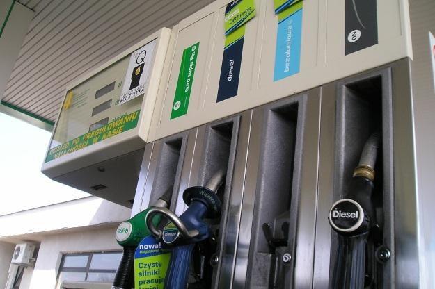 Rok temu za paliwo płaciliśmy 50 groszy mniej /INTERIA.PL