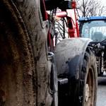 Rolnicy boją się, że nie dostaną dopłat na czas. Dopiero w sierpniu zacznie się kontrola wniosków