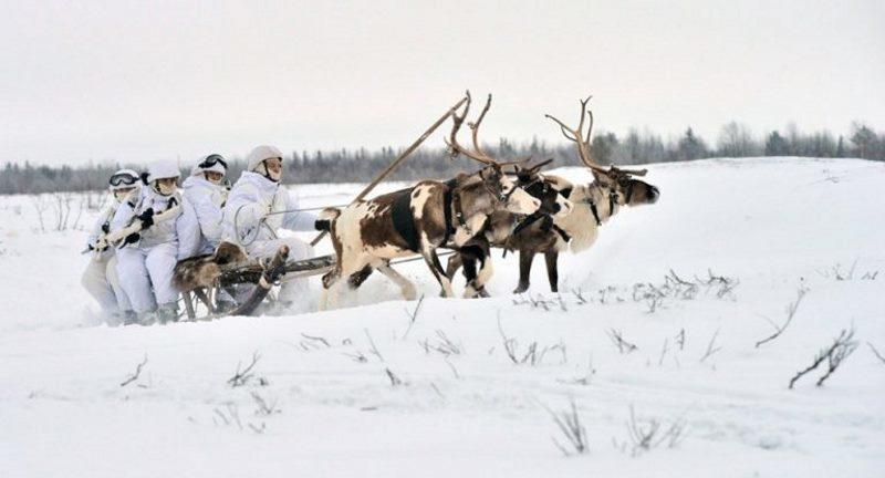 Rosyjskie jednostki - potocznie zwane arktycznymi - są wyszkolone i odpowiednio doposażone /materiały prasowe