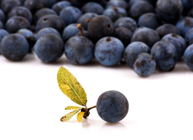Również  nasze rodzime owoce mają stosunkowo wysoką zawartość antyoksydantów /123RF/PICSEL