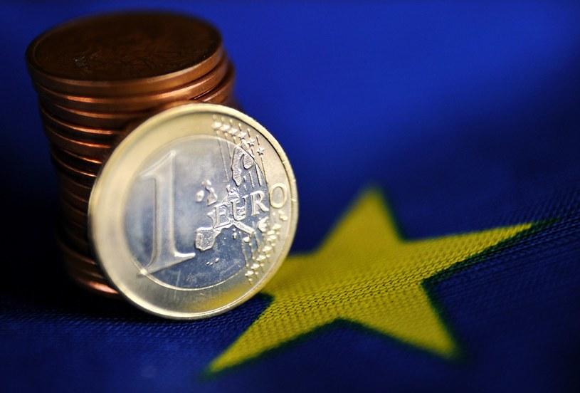 Rozmowy o referendum w sprawie przyjęcia euro nie wcześniej, niż w 2015 roku /AFP