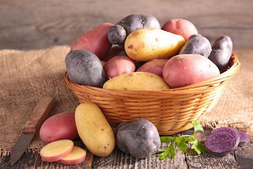 Różne odmiany ziemniaków /123RF/PICSEL