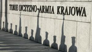 """""""Ruch oporu w Europie? Nie można go nawet porównać do Armii Krajowej"""""""