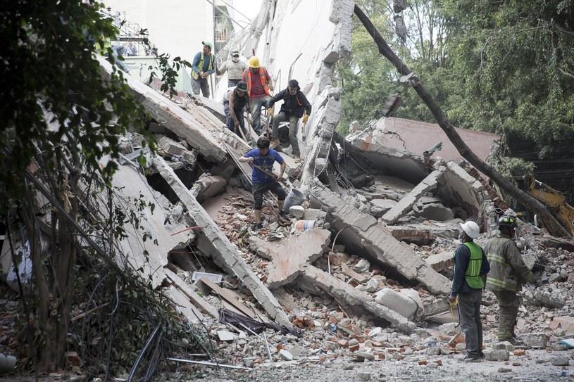 Ruiny po apartamentowcu w La Condesa /Francois Pesant /East News
