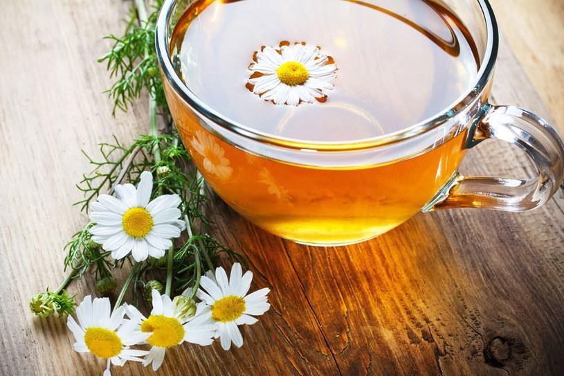 Rumianek, jedna z najbardziej znanych roślin leczniczych /©123RF/PICSEL