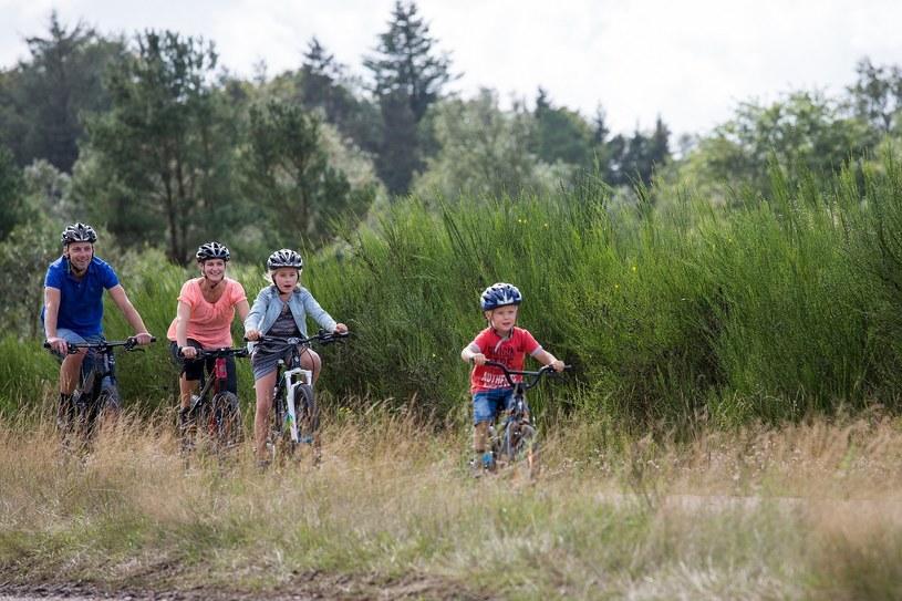 Rusz na wyprawę rowerową w Vejle /materiały prasowe