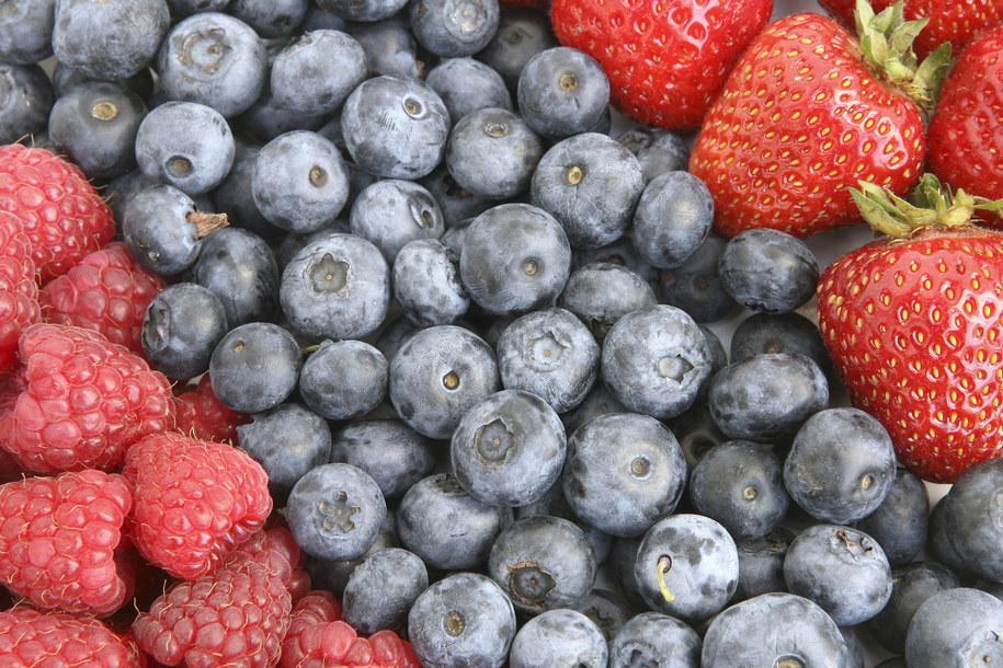 Ruszyła kampania promująca owoce jagodowe / Ernst Weingartner    /PAP/EPA