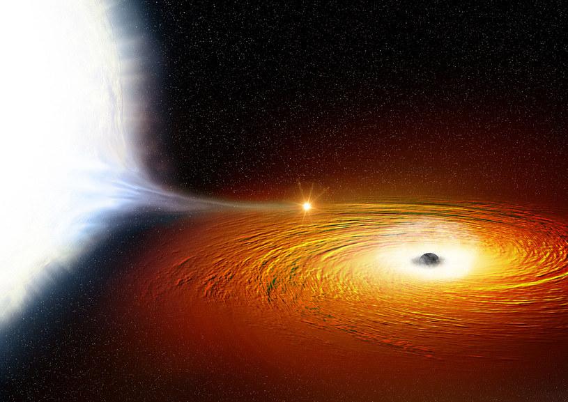 Rysunek obrazujący, jak biały karzeł (po lewej) krąży wokół czarnej dziury i stopniowo traci na jej rzecz swoją masę /NASA
