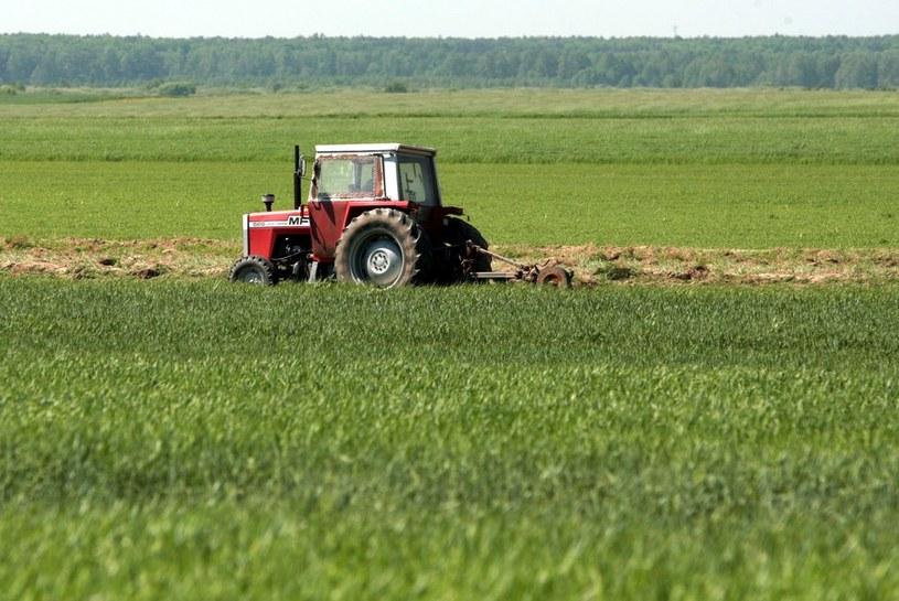 Rząd walczy o pieniądze na rolnictwo /Jakub Orzechowski  /Reporter