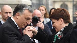 """""""Rzeczpospolita"""": Węgry remedium na międzynarodowe problemy PiS?"""