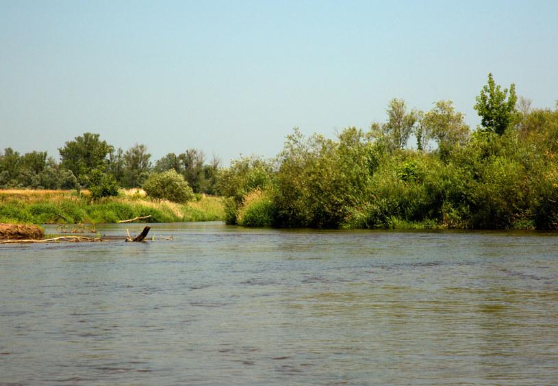 Rzeka Liwiec /©123RF/PICSEL