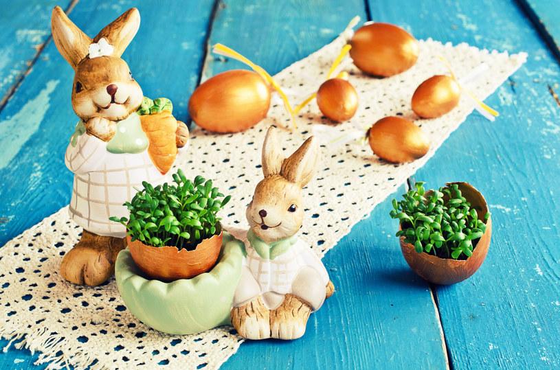 Rzeżuchę zasiej na tydzień przed Wielkanocą /©123RF/PICSEL