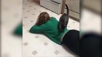 Rzuciła się na podłogę. Co na to kot?