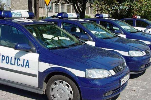 Samochody ankieterów? /INTERIA.PL