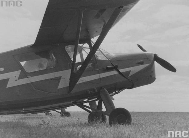 Samolot RWD-13 na płycie lotniska /Z archiwum Narodowego Archiwum Cyfrowego