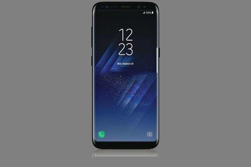 Samsung Galaxy S8 /materiały prasowe