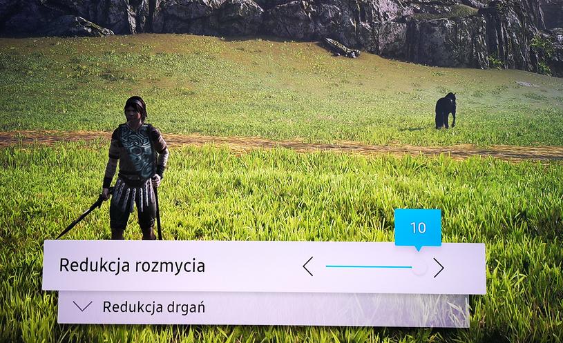Samsung QLED Q7F Motion Plus Gra  - PS4 Pro /INTERIA.PL