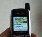 Samsung SGH X-600 /INTERIA.PL