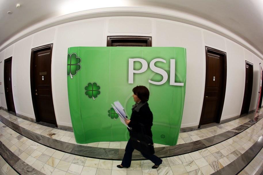 Sejmowa ścianka z logo PSL /PAP/Tomasz Gzell /PAP