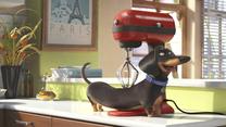"""""""Sekretne życie zwierzaków domowych"""" [trailer 2]"""