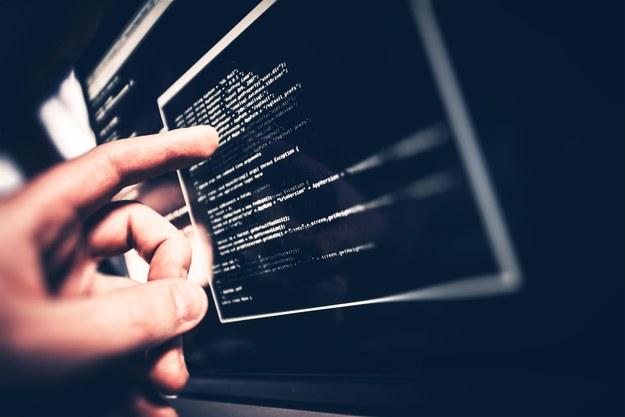 Sektor IT i nowych technologii jest obszarem o niespotykanej dynamice rozwoju /123RF/PICSEL