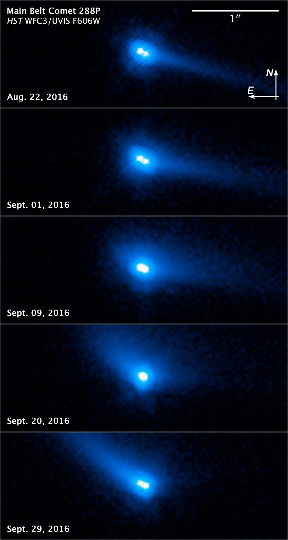 Seria kolejnych zdjęć pokazujących ewolucję 288P we wrześniu 2016 roku /NASA, ESA, and J. Agarwal (Max Planck Institute for Solar System Research) /Materiały prasowe