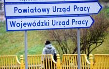 Setki tysięcy wolnych miejsc pracy. Brak kwalifikacji problemem Polaków