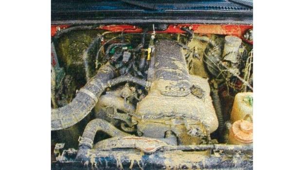 Silnik 1.3 nawet w trudnym terenie sprawnie sobie radzi z lekkim Suzuki. /Motor