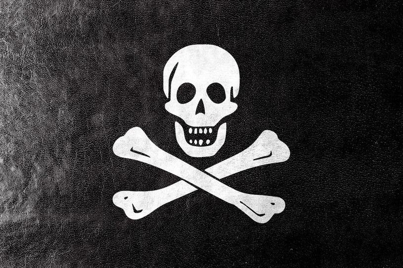 Skala piractwa nadal jest wysoka w porównaniu ze średnią światową /123RF/PICSEL