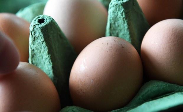 Skandal ze skażonymi jajami. Spotkanie KE dopiero we wrześniu