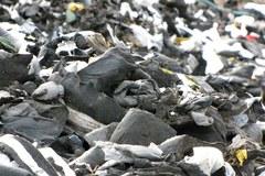 Składowisko odpadów na terenie Głuszycy. Może być nielegalne