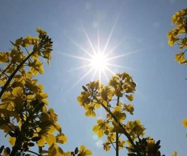 Słońce może pozbawić cały kraj elektryczności