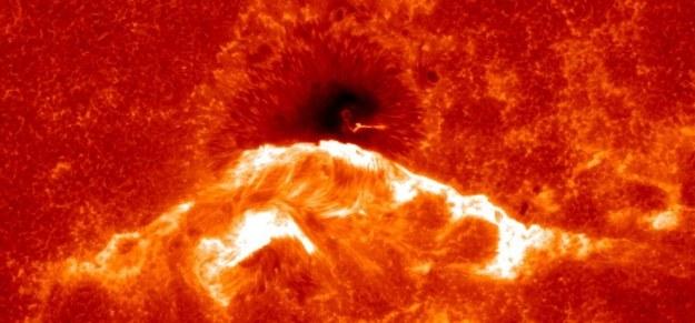 Słońce wchodzi w okres swojej aktywności /materiały prasowe